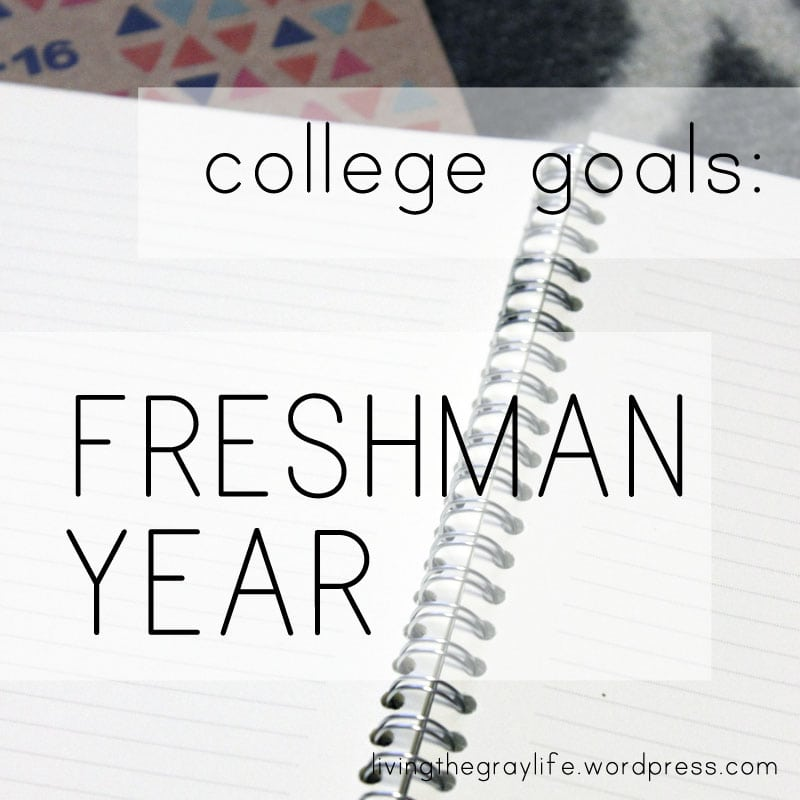College Goals Freshman Year @ the University of South Carolina