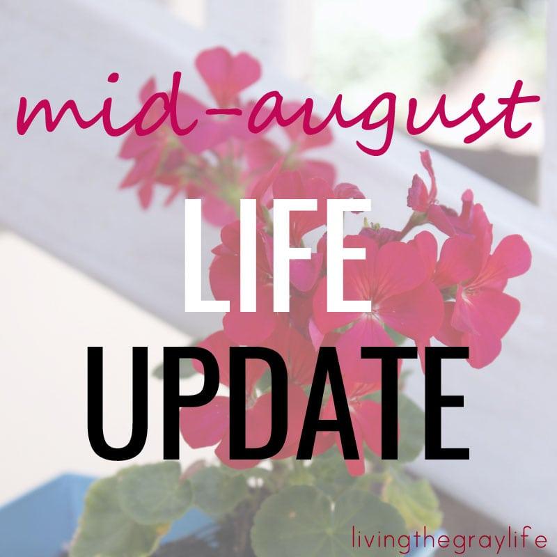 August Life Update Bloglovin' Blogger Buddies