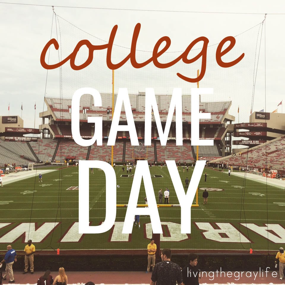 game day at the University of South Carolina Williams Brice Stadium