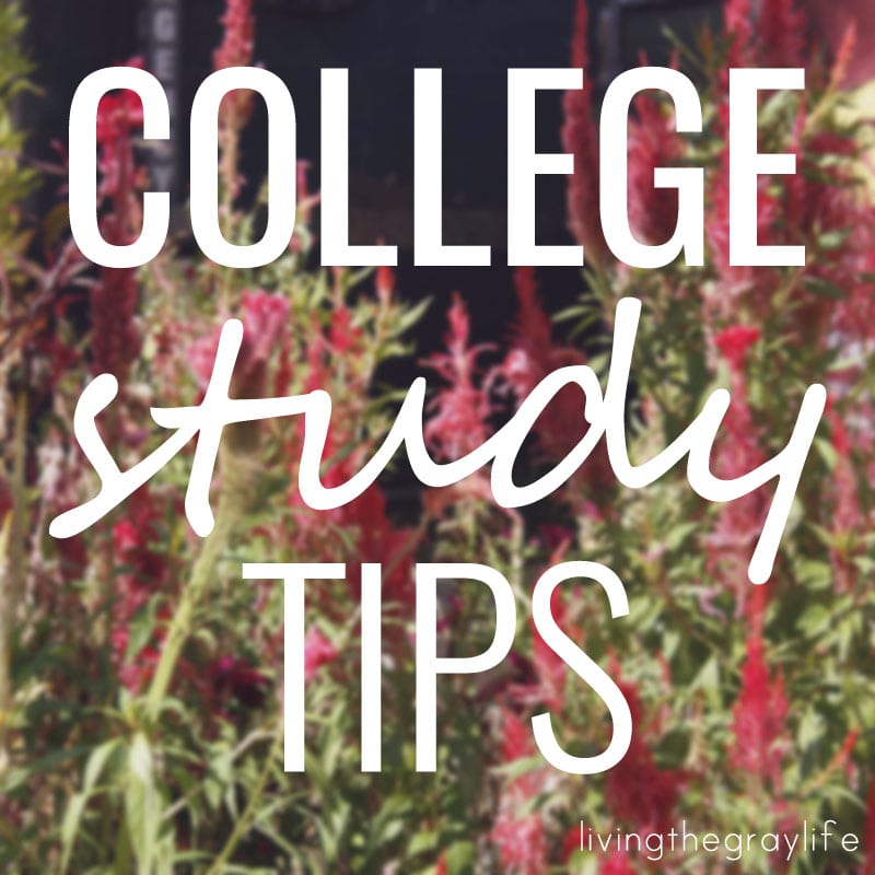 College study tips for freshman