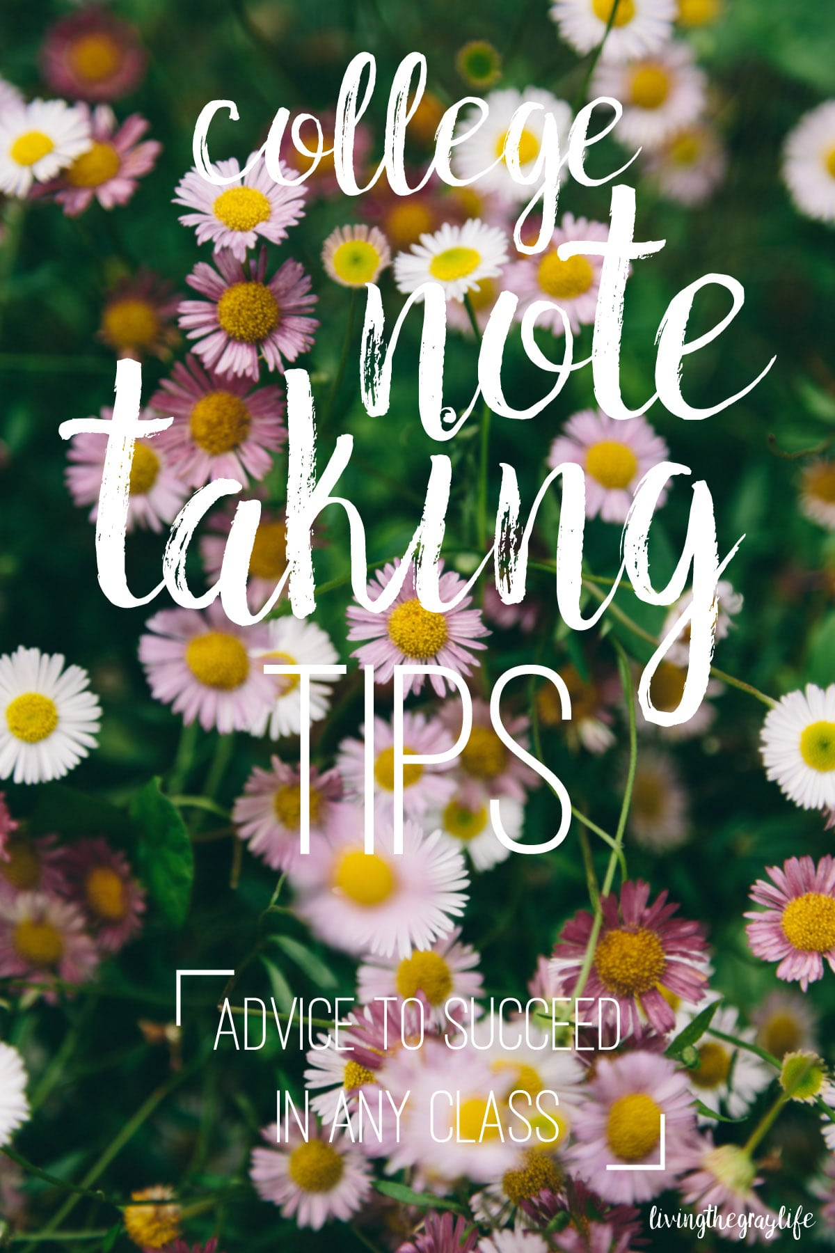 Struggling in a college class or just looking to improve your note taking? Check out this post for tips & tricks to keep those notes organized and resourceful!