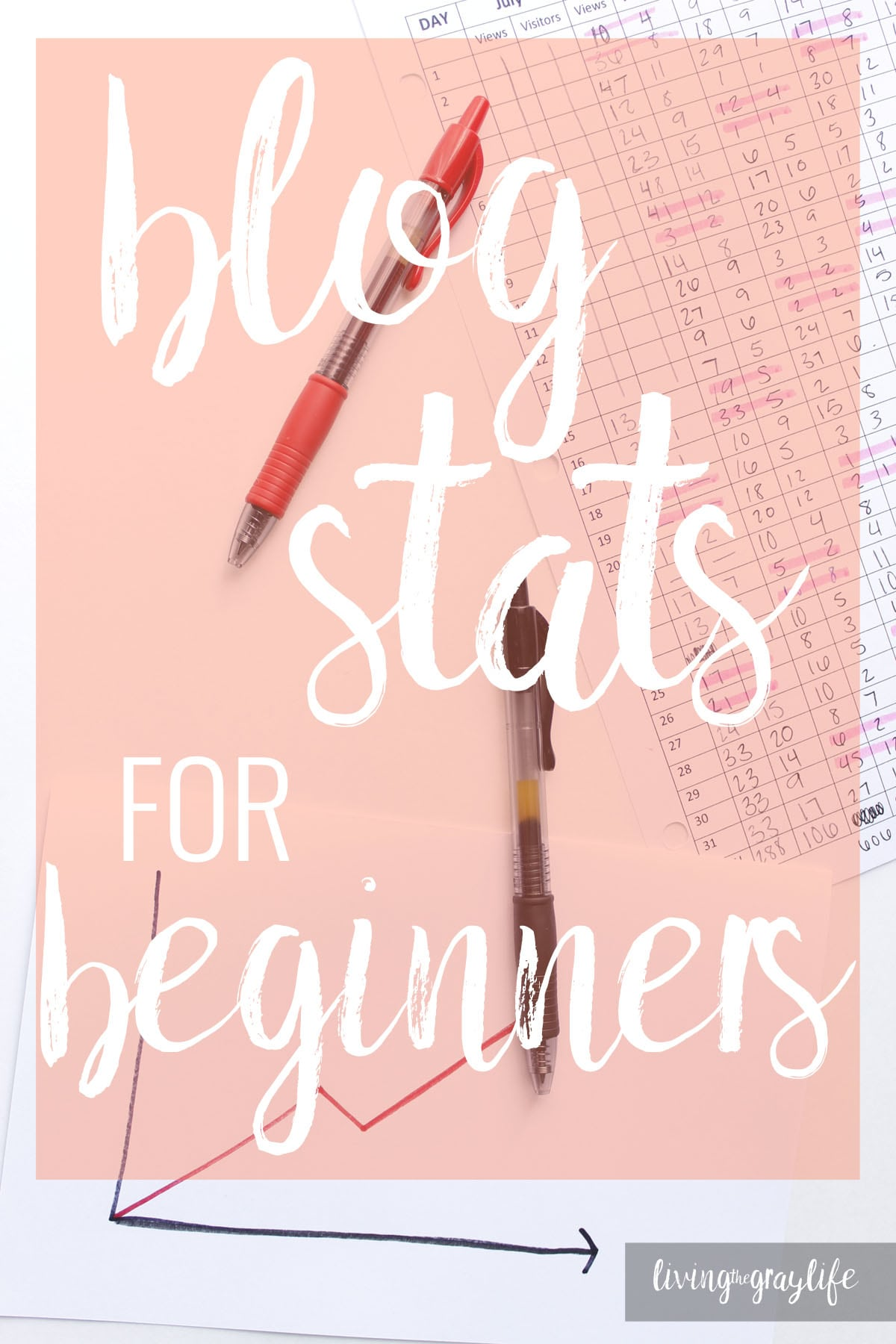 Beginner Blogger: Blog Stats for beginners