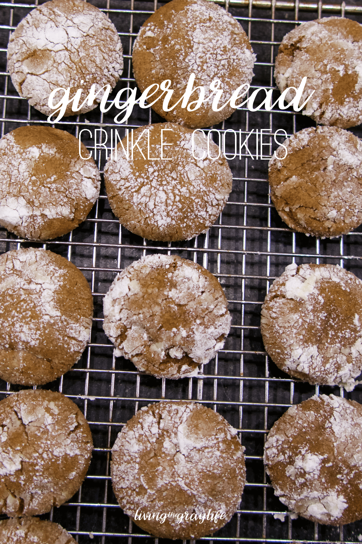 Gingerbread Crinkle Cookies | Easy, simple, and delicious way to celebrate the holidays!